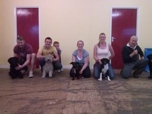 Down District Dog Training Club
